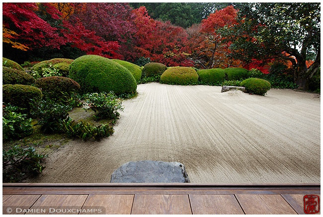 Shisen-do Temple garden in autumn