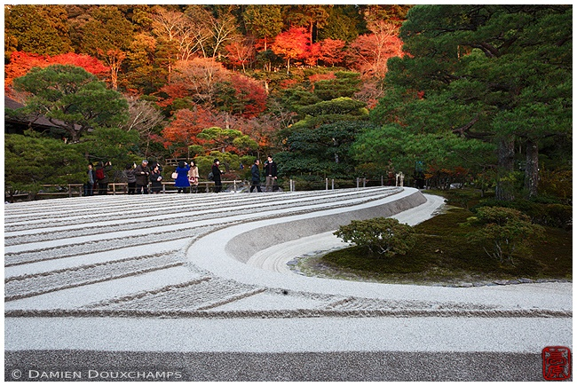 Ginkaku-ji with autumn leaves image copyright Damien Douxchamps