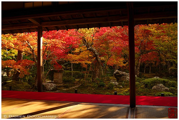 Enko-ji Temple garden in autumn