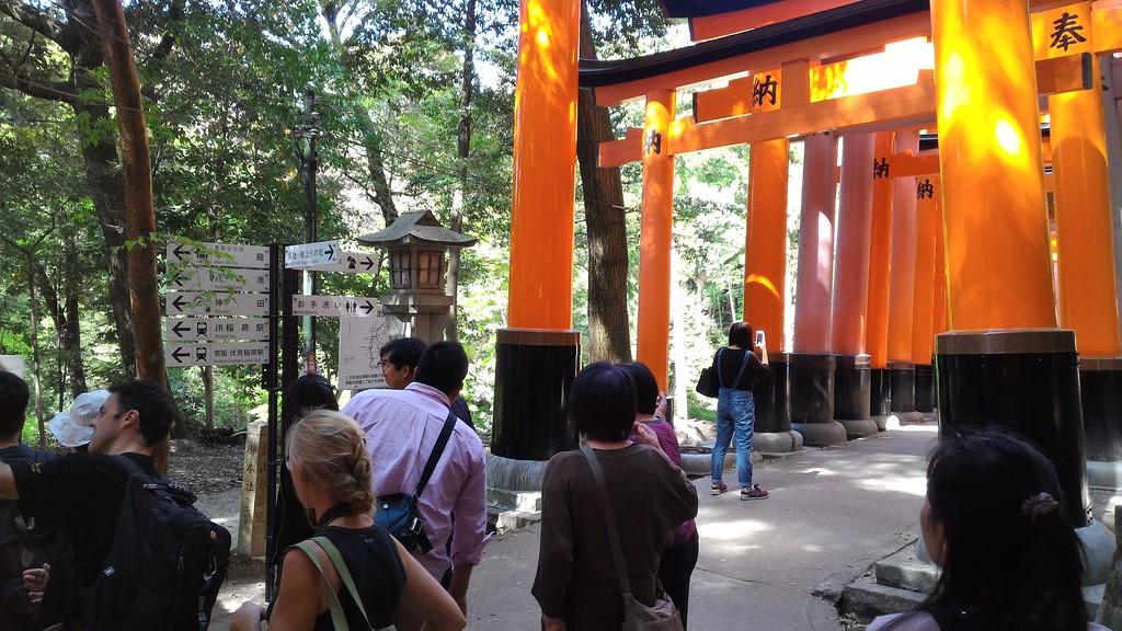 Start of Walk to Upper Shrine