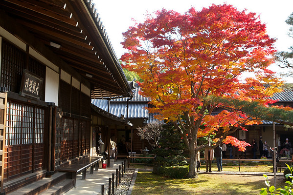 Temple Genko-an in northern Kyoto in Autumn<br /> <br /> Typical Japanese Zen Temple with Maple Foliage