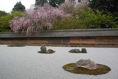 Hanazono, Kyoto 2010