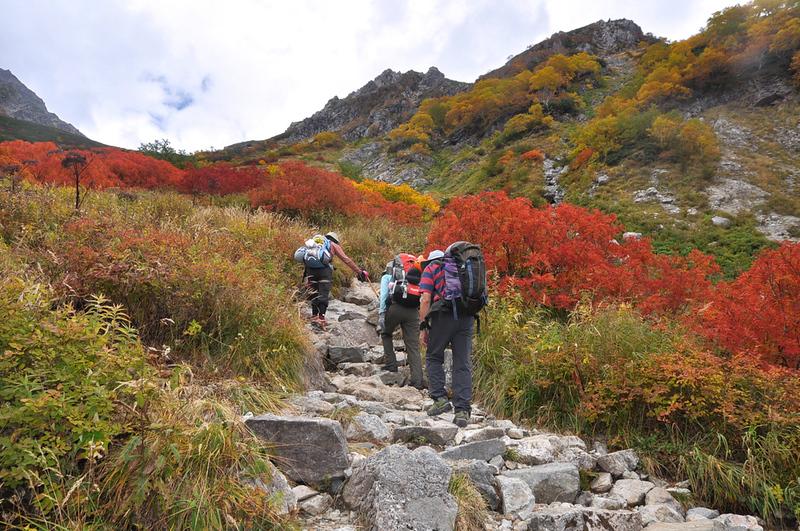 Autumn in the North Alps. Editorial credit: PHUC TRAN CONG / Shutterstock.com