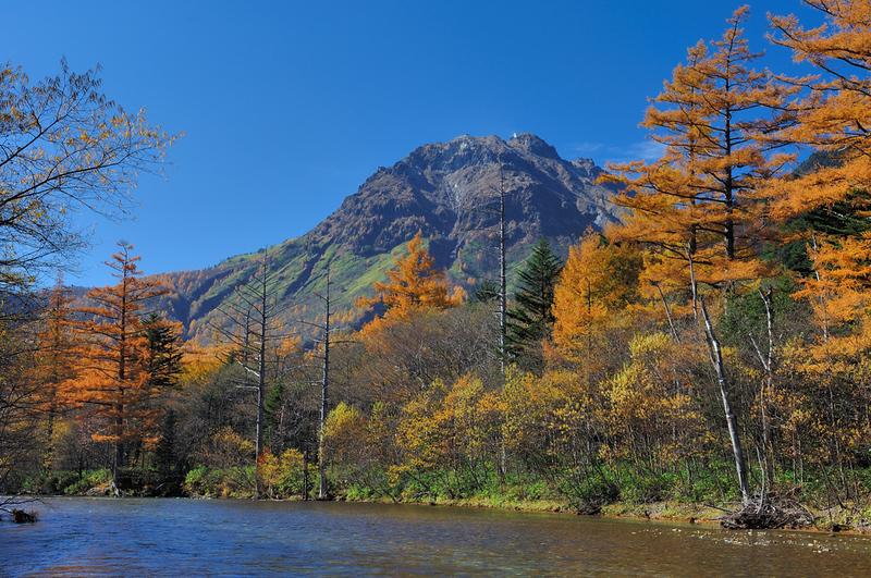 Mt Yake in Autumn. Editorial credit: Ichiro Murata / Shutterstock.com