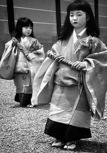 Aoi Festival