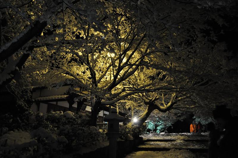 Shinyodo Temple Steps