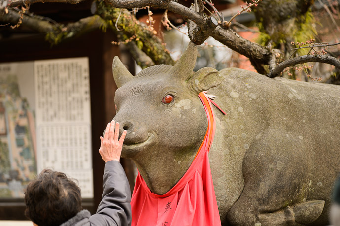 Kitano Tenman-gu Shrine - image copyright Jeffrey Friedl