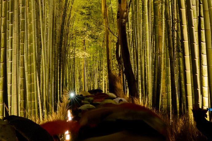 Arashiyama Hanatouro - image copyright Jeffrey Friedl