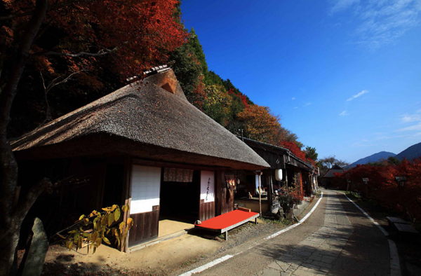 Kumano Kodo near Tsugizakura-oji