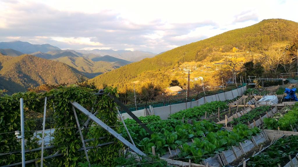 Takahara Village