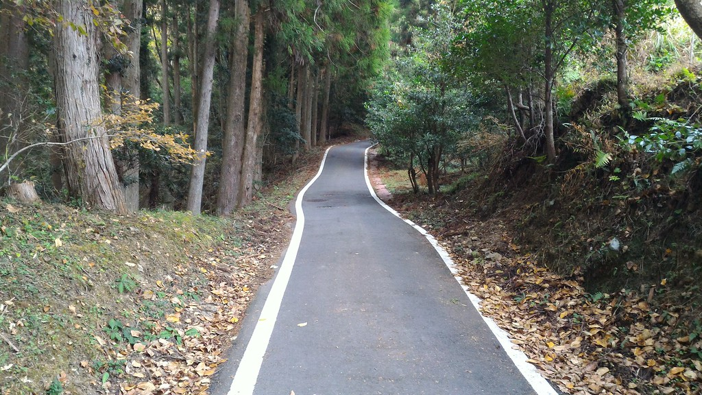 Road up to Hisohara-oji