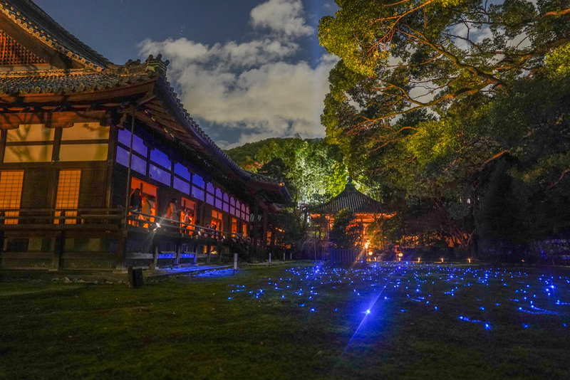 Shoren-in during evening illumination. Editorial credit: Rei Imagine / Shutterstock.com