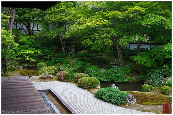 A garden lover's secret delight: Sennyu-ji Temple image copyright Damien Douxchamps