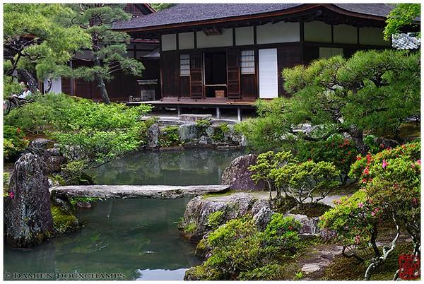 Ginkaku-ji Temple: One of Kyoto's finest gardens image copyright Damien Douxchamps