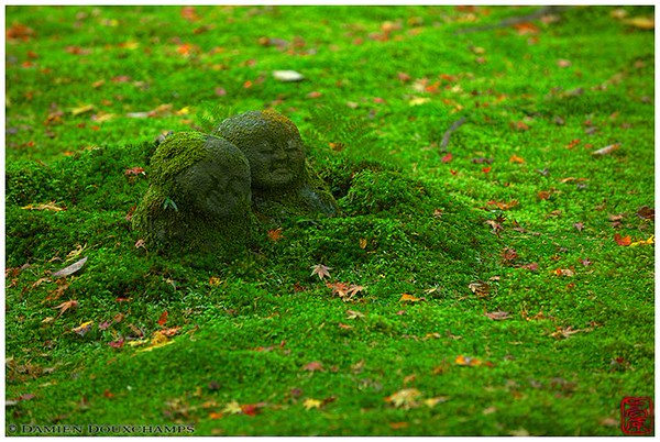 Jizo figures deep in the moss image copyright Damien Douxchamps