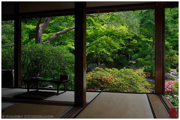 The tea room at Shoren-in Temple image copyright Damien Douxchamps