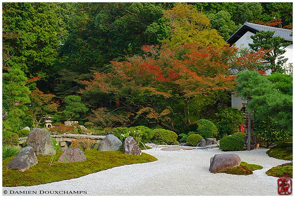 The fall opening at Kurodani Temple's garden image copyright Damien Douxchamps