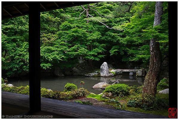 A secret paradise: Renge-ji Temple image copyright Damien Douxchamps