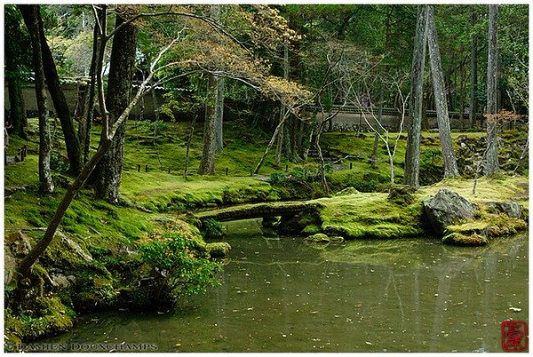 The moss garden at Kyoto's