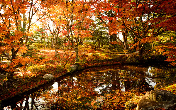 Shugaku-in with spectacular fall foliage image copyright Jeffrey Friedl