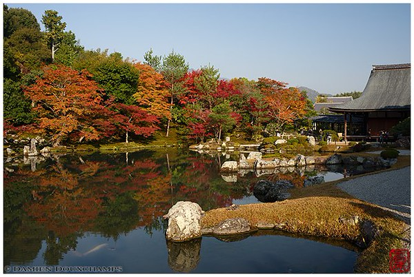 Tenryu-ji Temple during fall foliage season image copyright Damien Douxchamps