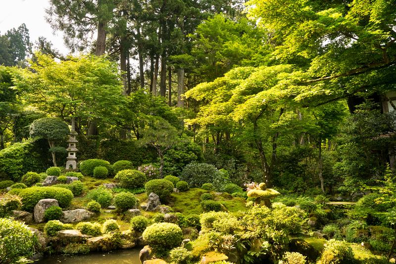 Garden at Sanzen-in Temple
