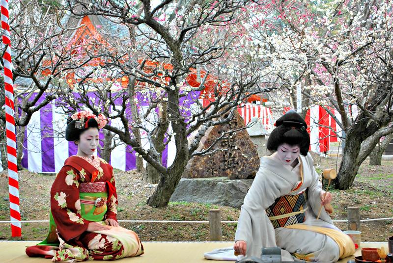 Kyoto geisha during plum blossom celebration at Kitano-tenmangu Shrine