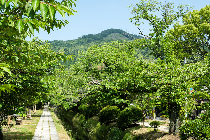 Daimonji-yama above the Path of Philosophy