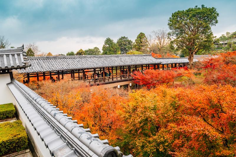 Brilliant maples at Tofuku-ji Temple