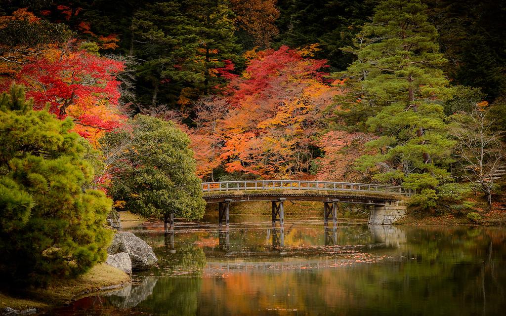 Fall colors at Shugakuin Rikyu Imperial Villa  : copyright Jeffrey Friedl