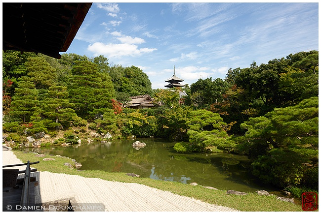 Garden at Ninna-ji Temple : copyright Damien Douxchamps