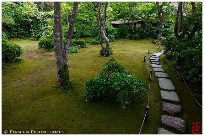 Walkway through Okochi-Sanso Villa garden : copyright Damien Douxchamps