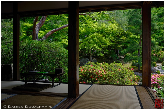 Garden at Shoren-in Temple : copyright Damien Douxchamps