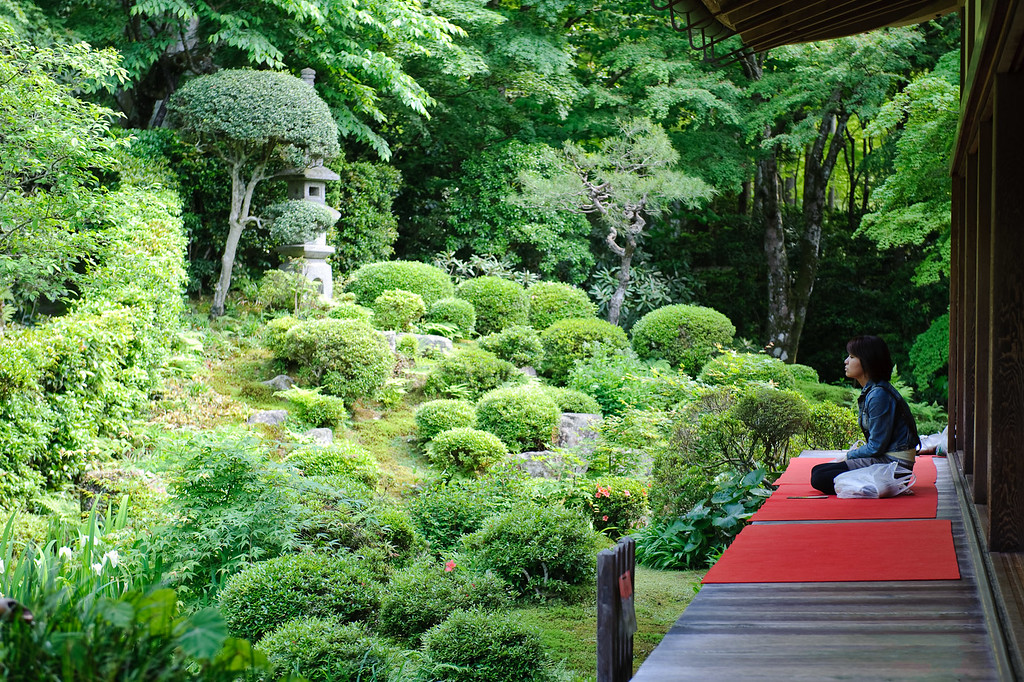 Contemplating the garden at Ohara's Sanzen-in Temple  : copyright Jeffrey Friedl