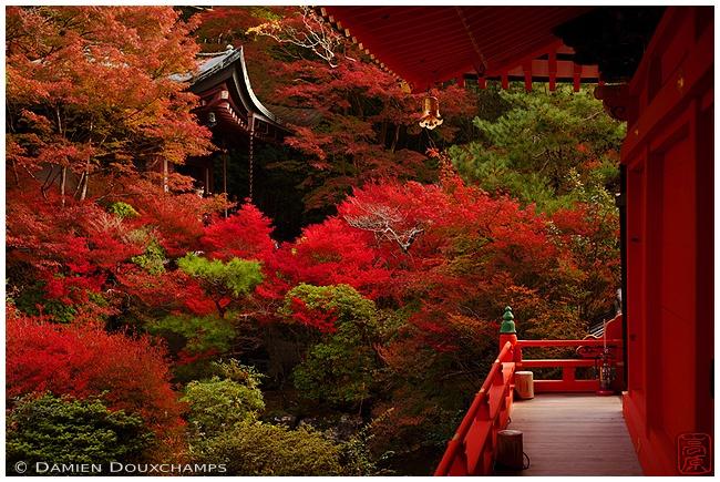Bishamon-do Temple in Yamashina : copyright Damien Douxchamps