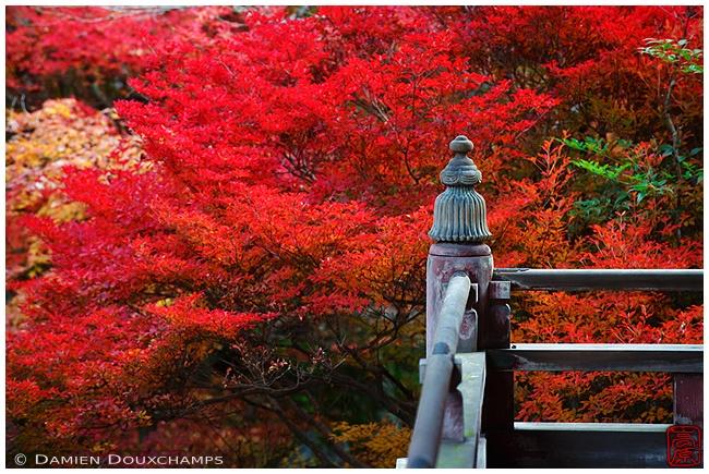 The colors working at Yamashina's Bishamon-do Temple