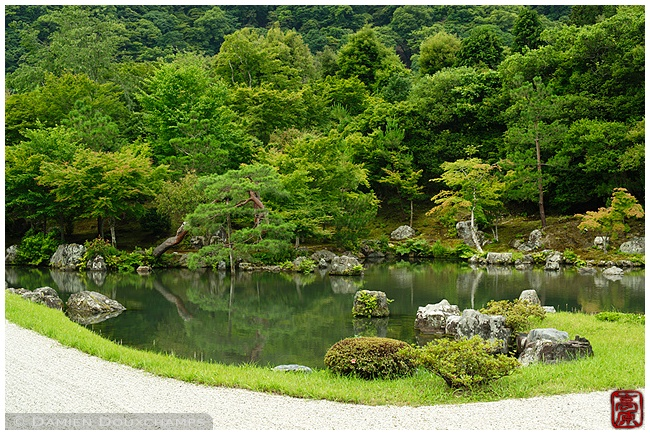 New green at Tenryu-ji Temple garden : copyright Damien Douxchamps