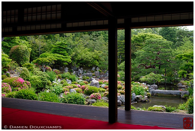 Toji-in Temple garden in late spring : copyright Damien Douxchamps