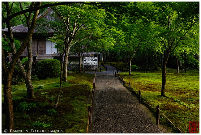 Ohara's Sanzen-in Temple with new green : copyright Damien Douxchamps