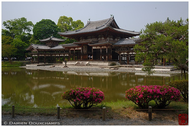 Phoenix Hall at Byodo-in Temple in Uji : copyright Damien Douxchamps