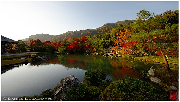 Pond and garden at Tenryu-ji in fall: copyright Damien Douxchamps