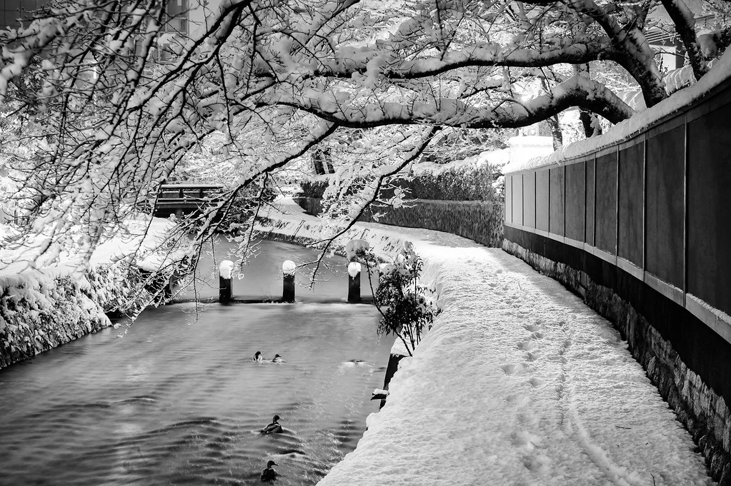 Shirakawa Canal in winter: copyright Jeffrey Friedl