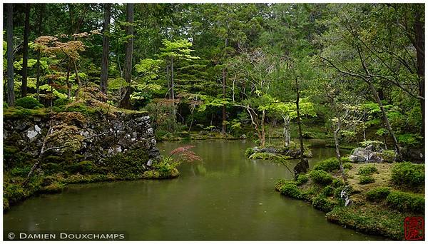 Pond at Saiho-ji, Kyoto's famed Moss Temple: copyright Damien Douxchamps