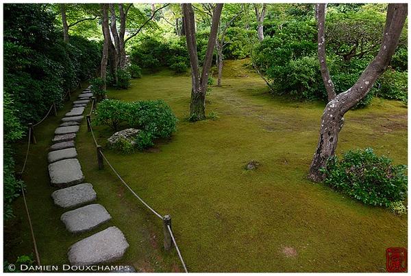 Pathway in the garden at Okochi-Sanso Villa: copyright Damien Douxchamps