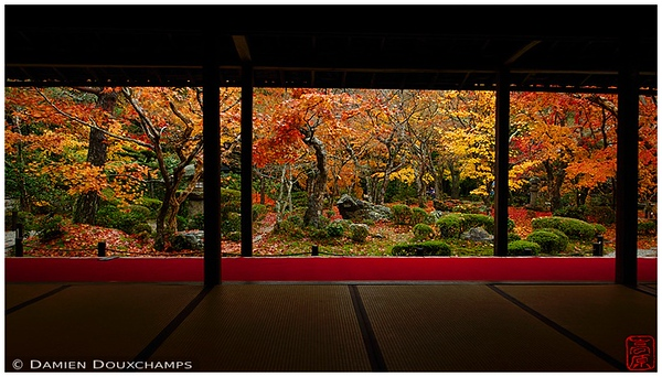 Enko-ji Temple garden in the fall: copyright Damien Douxchamps