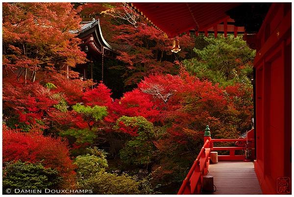 Bishamon-do Temple in Yamashina: copyright Damien Douxchamps