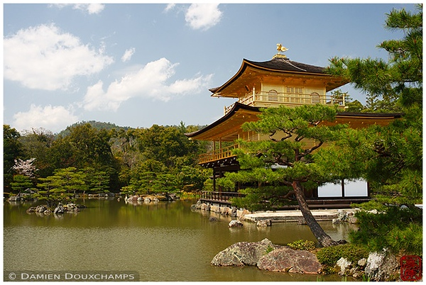 "Kinkaku-ji Temple, Kyoto's famed ""Golden Pavilion"" : copyright Damien Douxchamps"