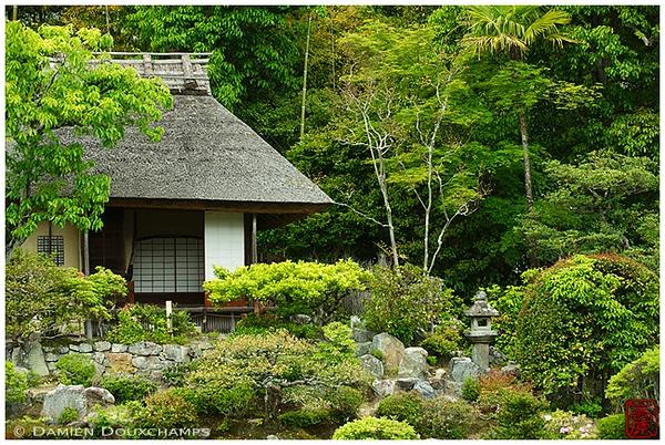 The garden at Toji-in Temple: copyright Damien Douxchamps