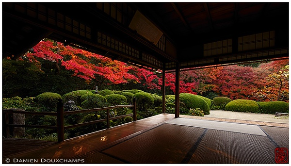 Shisen-do Temple garden with autumn colors: copyright Damien Douxchamps