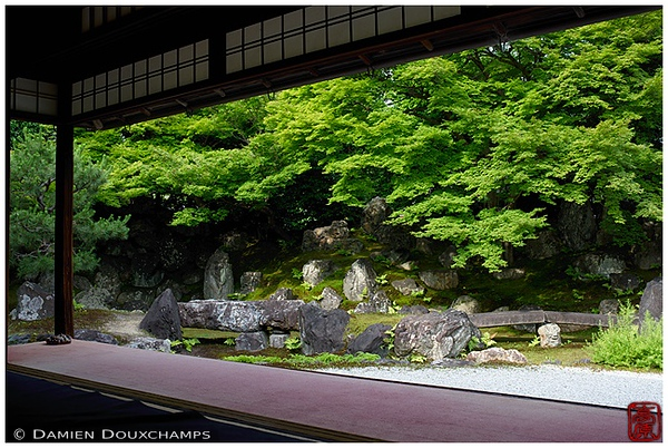 Garden at Entoku-in Temple: copyright Damien Douxchamps